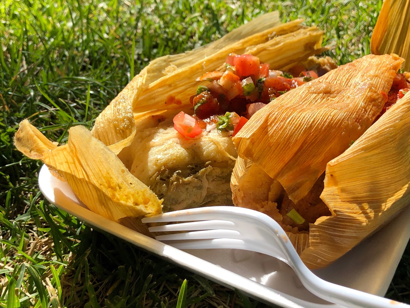Two tamales in a container on a park lawn.