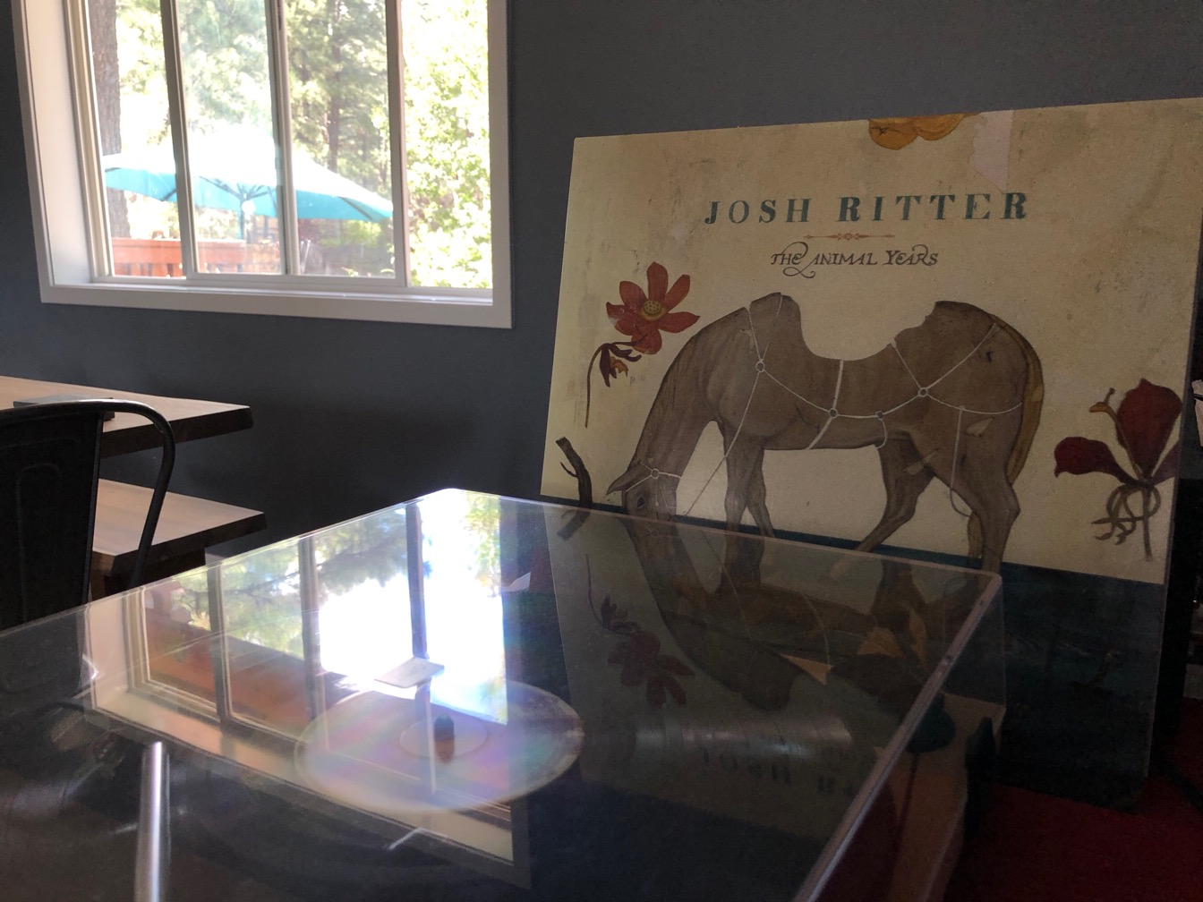 A picture of a turntable with Josh Ritter's album Animal Yeats next to it.