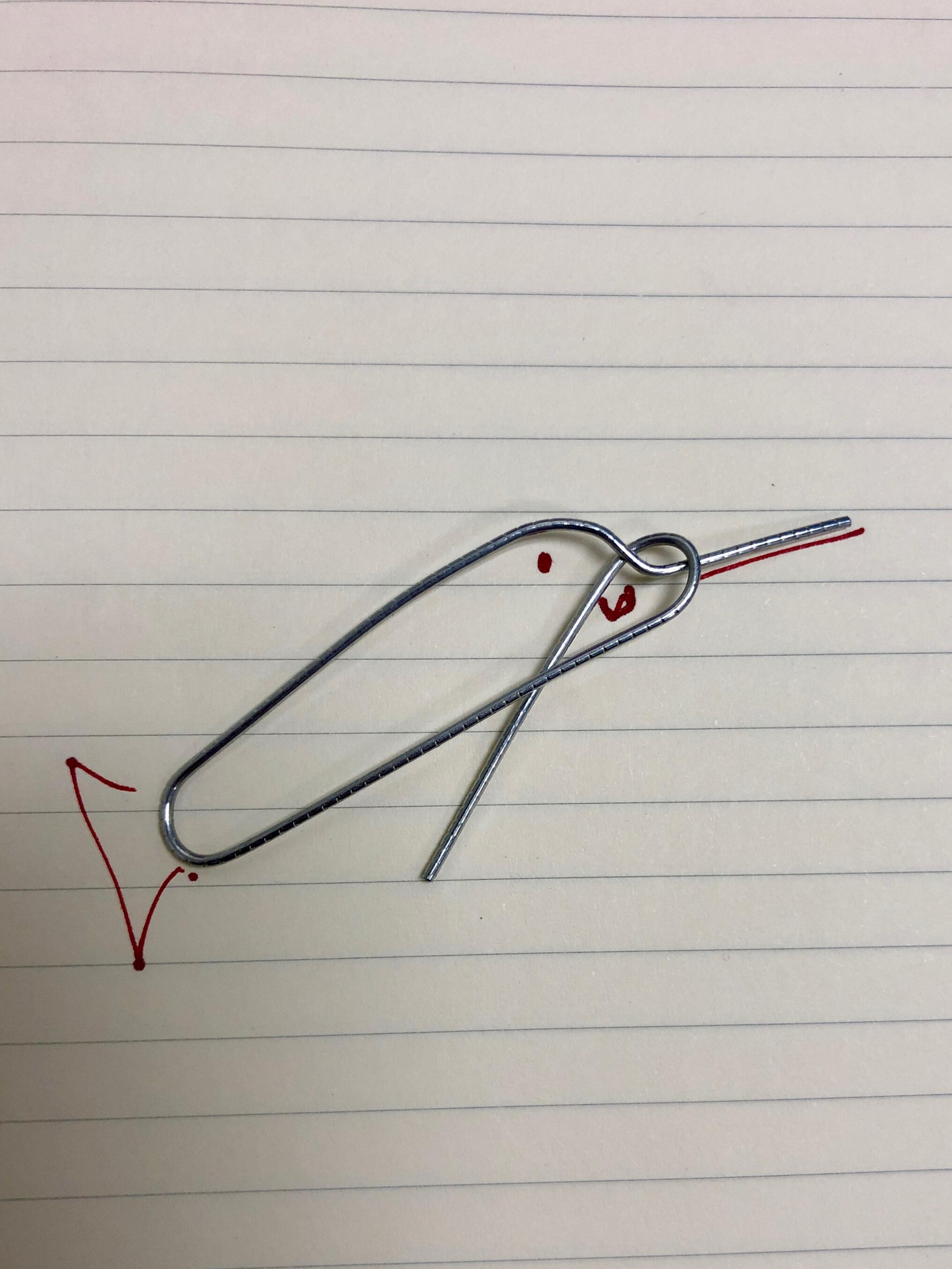 photo of a paperclip twisted into the shape of a narwhal