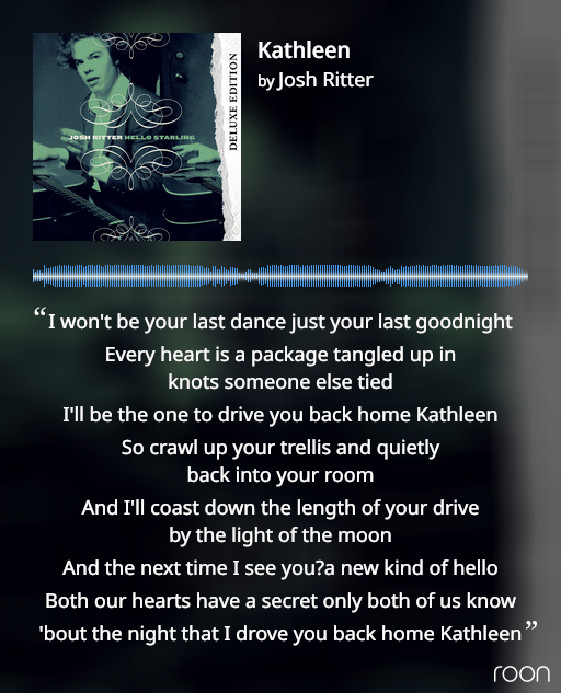 Album cover: photo of Josh Ritter with a guitar; and the lyrics to the song Kathleen: 'every heart is a package tangled up in knots someone else tied.'