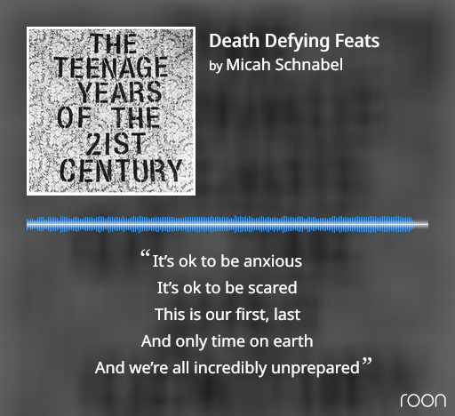 Cover art and lyrics for Micah Schnabel's song Death Defying Feats