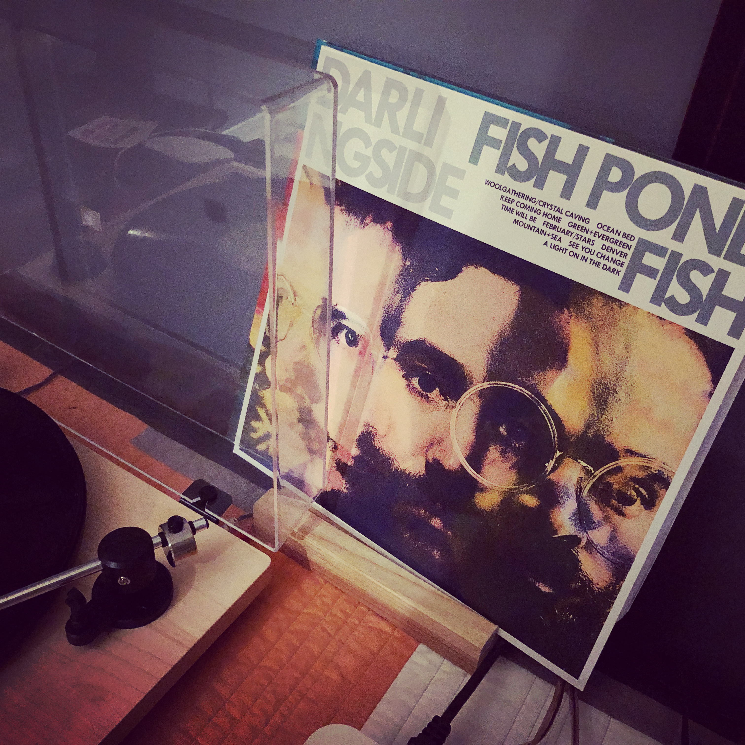 Photo of the album cover for Darlingside's Fish Pond Fish: four faces merged into three sets of overlapping eyes