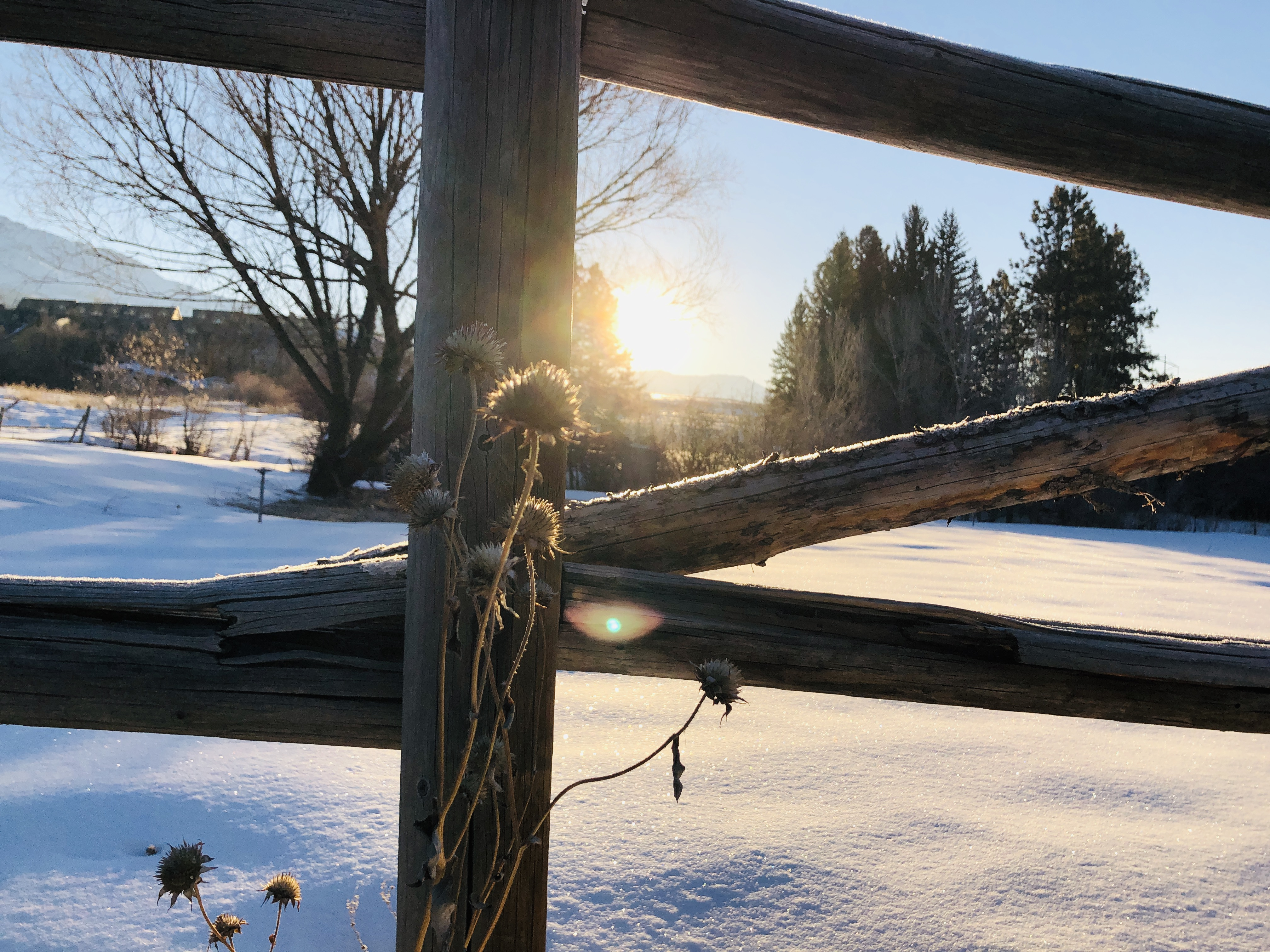 A photo of the sun rising beyond a snowy meadow, seen through a frame of a log fence.
