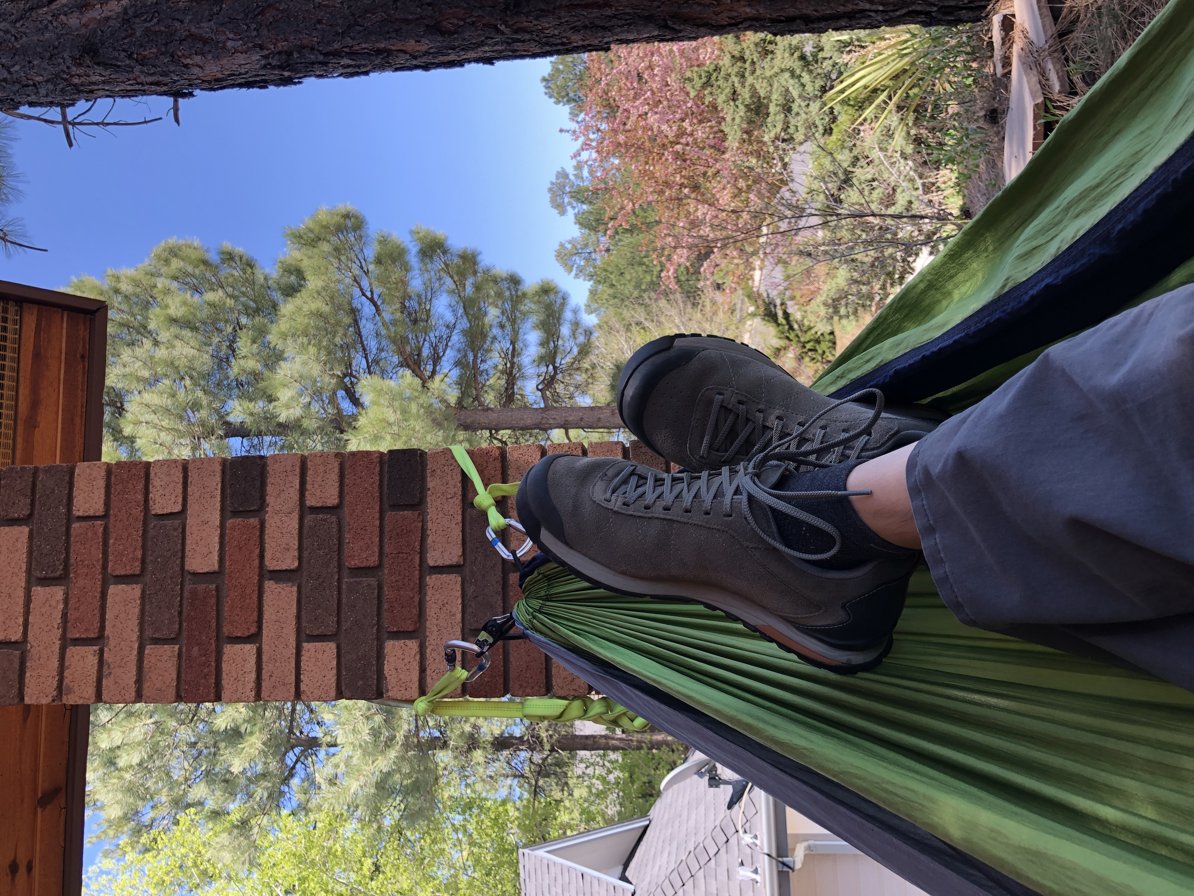 Feet up in a hammock in front of pine trees and blue sky